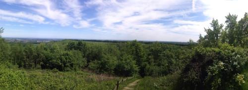 Tolle Aussicht von der Glessener Höhe.