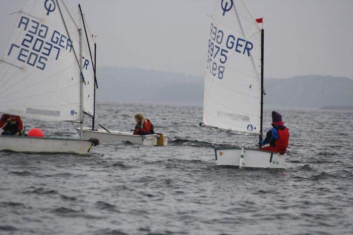 Segel-Optis auf dem Schweriner See